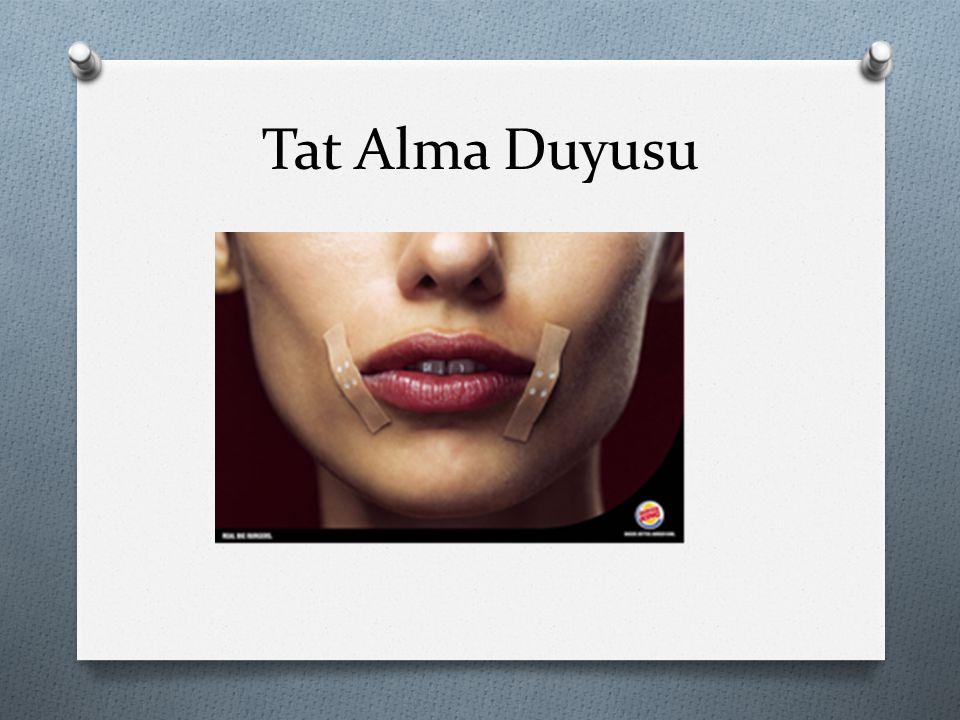 Tat Alma Duyusu