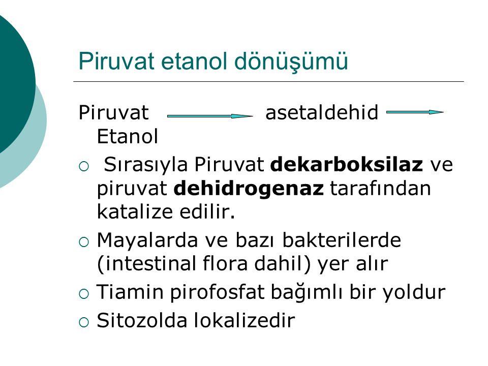 Piruvat etanol dönüşümü Piruvat asetaldehid Etanol  Sırasıyla Piruvat dekarboksilaz ve piruvat dehidrogenaz tarafından katalize edilir.  Mayalarda v