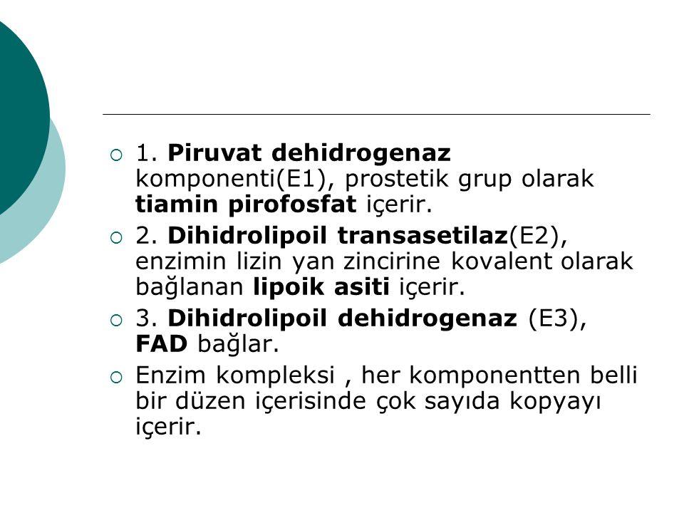  1. Piruvat dehidrogenaz komponenti(E1), prostetik grup olarak tiamin pirofosfat içerir.  2. Dihidrolipoil transasetilaz(E2), enzimin lizin yan zinc