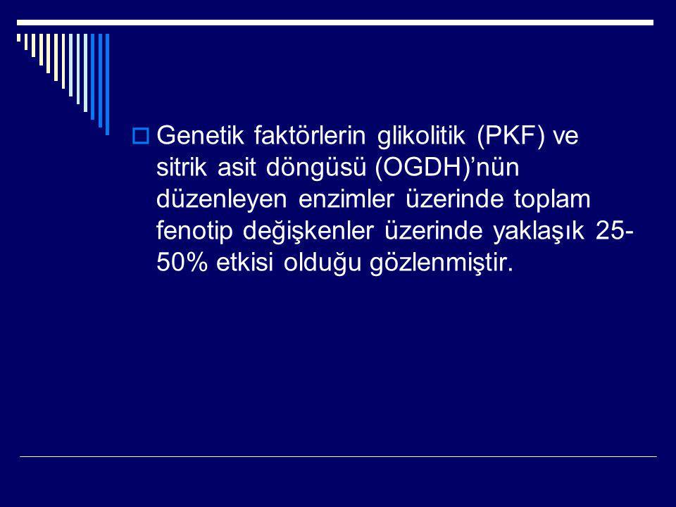  Genetik faktörlerin glikolitik (PKF) ve sitrik asit döngüsü (OGDH)'nün düzenleyen enzimler üzerinde toplam fenotip değişkenler üzerinde yaklaşık 25-