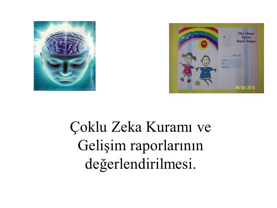 Çoklu Zeka Kuramı ve Gelişim raporlarının değerlendirilmesi.