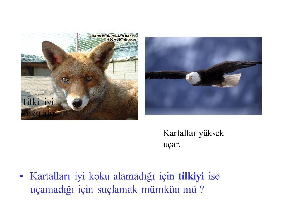 Tilki iyi koku alır. Kartallar yüksek uçar. Kartalları iyi koku alamadığı için tilkiyi ise uçamadığı için suçlamak mümkün mü ?