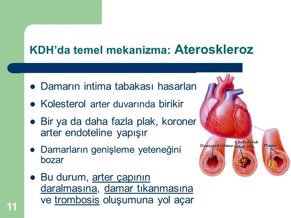 11 KDH'da temel mekanizma: Ateroskleroz Damarın intima tabakası hasarlanır Kolesterol arter duvarında birikir Bir ya da daha fazla plak, koroner arter
