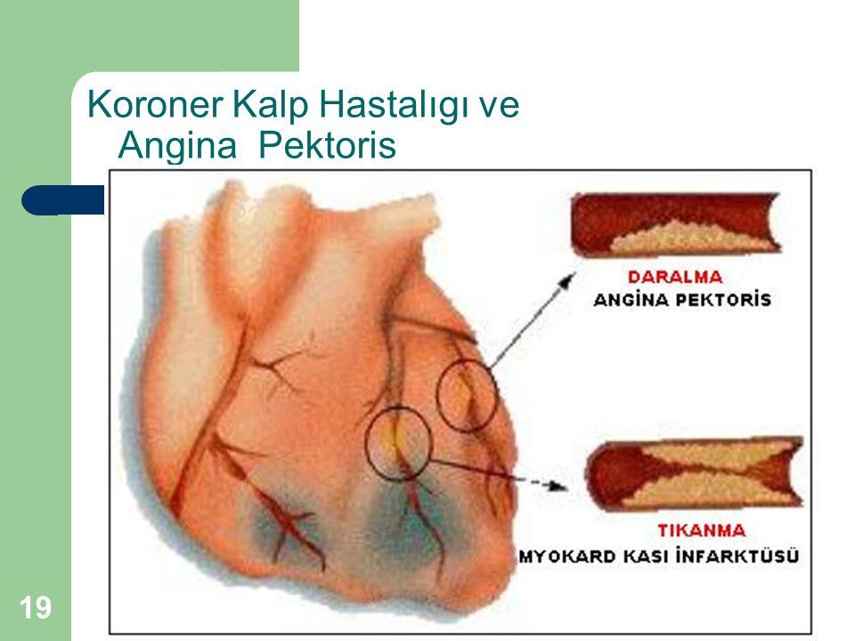 19 Koroner Kalp Hastalıgı ve Angina Pektoris