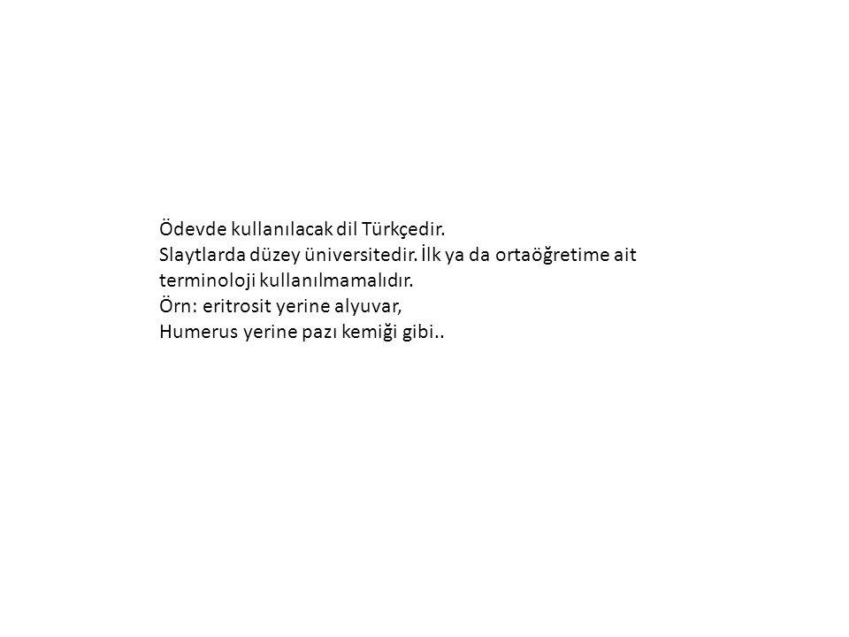 Ödevde kullanılacak dil Türkçedir.Slaytlarda düzey üniversitedir.