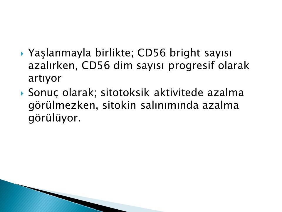  Yaşlanmayla birlikte; CD56 bright sayısı azalırken, CD56 dim sayısı progresif olarak artıyor  Sonuç olarak; sitotoksik aktivitede azalma görülmezke