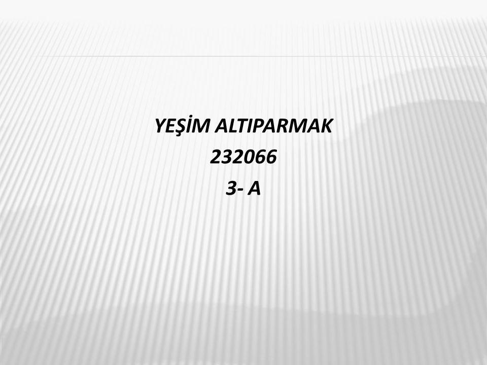 YEŞİM ALTIPARMAK 232066 3- A