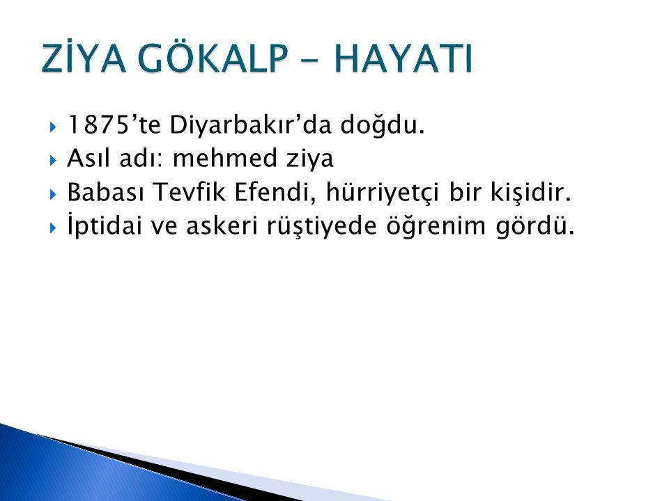  1875'te Diyarbakır'da doğdu.  Asıl adı: mehmed ziya  Babası Tevfik Efendi, hürriyetçi bir kişidir.  İptidai ve askeri rüştiyede öğrenim gördü.