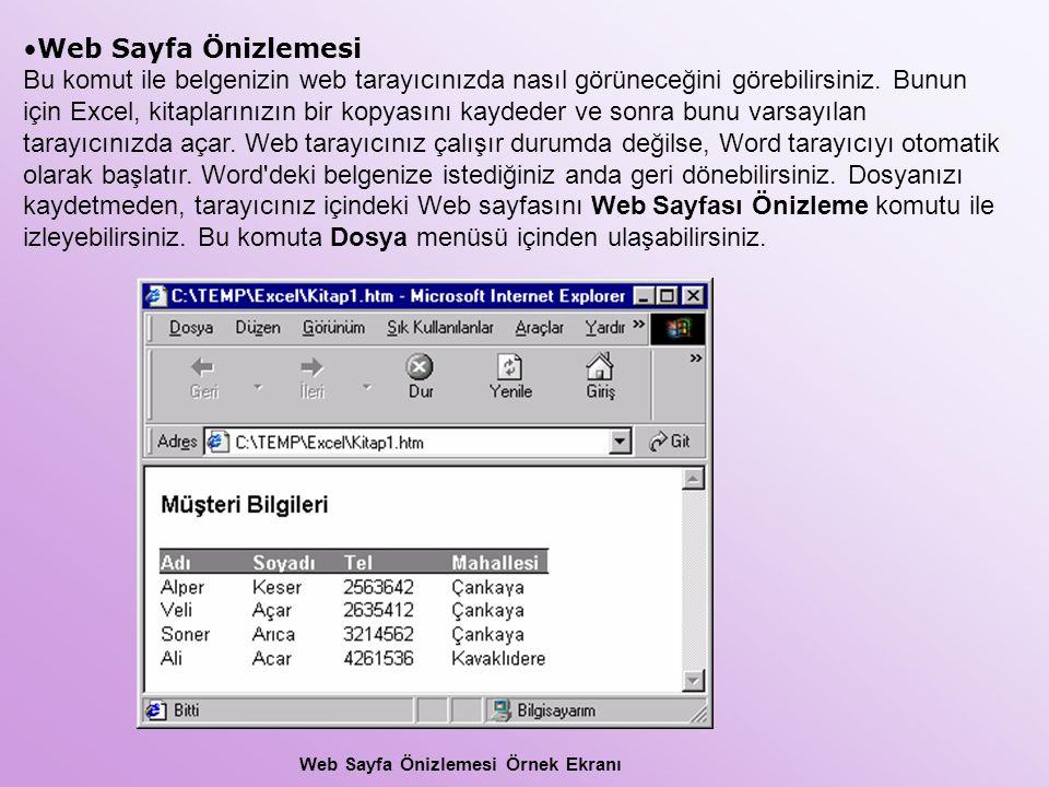 Web Sayfa Önizlemesi Bu komut ile belgenizin web tarayıcınızda nasıl görüneceğini görebilirsiniz. Bunun için Excel, kitaplarınızın bir kopyasını kayde