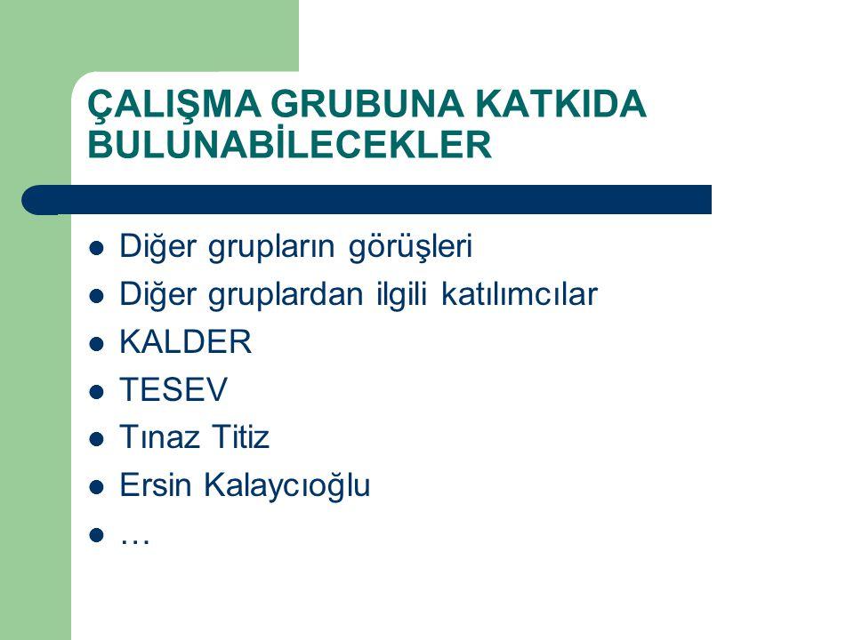 ÇALIŞMA GRUBUNA KATKIDA BULUNABİLECEKLER Diğer grupların görüşleri Diğer gruplardan ilgili katılımcılar KALDER TESEV Tınaz Titiz Ersin Kalaycıoğlu …