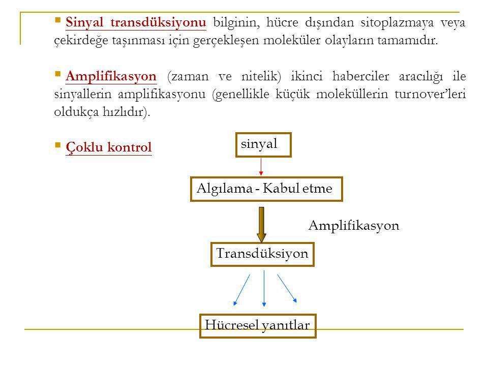  Sinyal transdüksiyonu bilginin, hücre dışından sitoplazmaya veya çekirdeğe taşınması için gerçekleşen moleküler olayların tamamıdır.  Amplifikasyon
