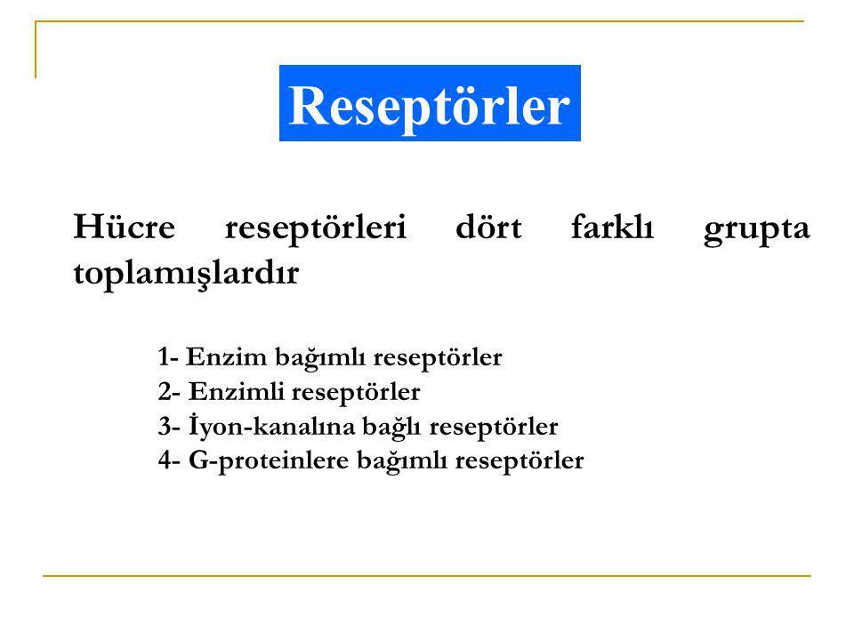 Reseptörler Hücre reseptörleri dört farklı grupta toplamışlardır 1- Enzim bağımlı reseptörler 2- Enzimli reseptörler 3- İyon-kanalına bağlı reseptörle
