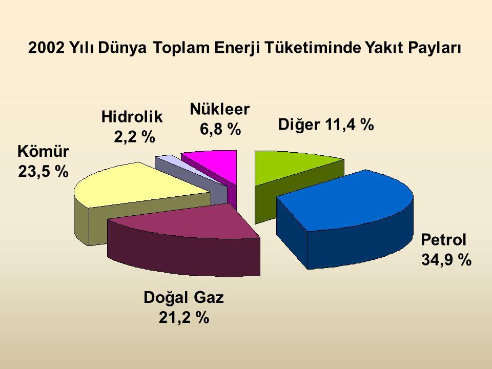 Kömür 23,5 % Doğal Gaz 21,2 % Petrol 34,9 % Diğer 11,4 % Nükleer 6,8 % Hidrolik 2,2 % 2002 Yılı Dünya Toplam Enerji Tüketiminde Yakıt Payları