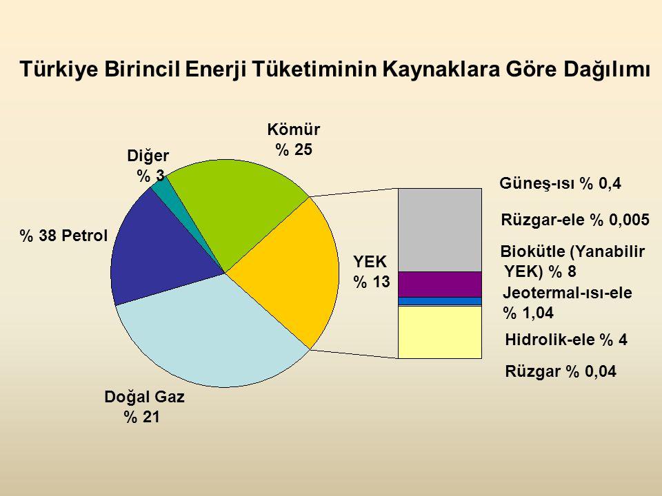% 38 Petrol Diğer % 3 Kömür % 25 YEK % 13 Doğal Gaz % 21 Rüzgar-ele % 0,005 Hidrolik-ele % 4 Jeotermal-ısı-ele % 1,04 Güneş-ısı % 0,4 Biokütle (Yanabilir YEK) % 8 Rüzgar % 0,04 Türkiye Birincil Enerji Tüketiminin Kaynaklara Göre Dağılımı
