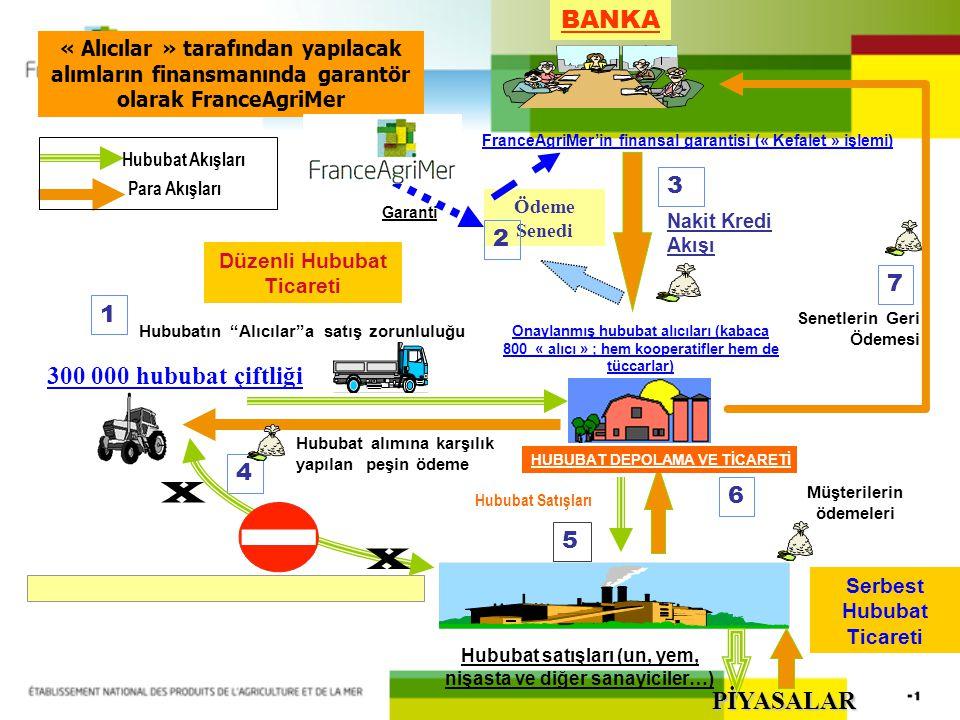 BANKA Senetlerin Geri Ödemesi 300 000 hububat çiftliği Onaylanmış hububat alıcıları (kabaca 800 « alıcı » ; hem kooperatifler hem de tüccarlar) France