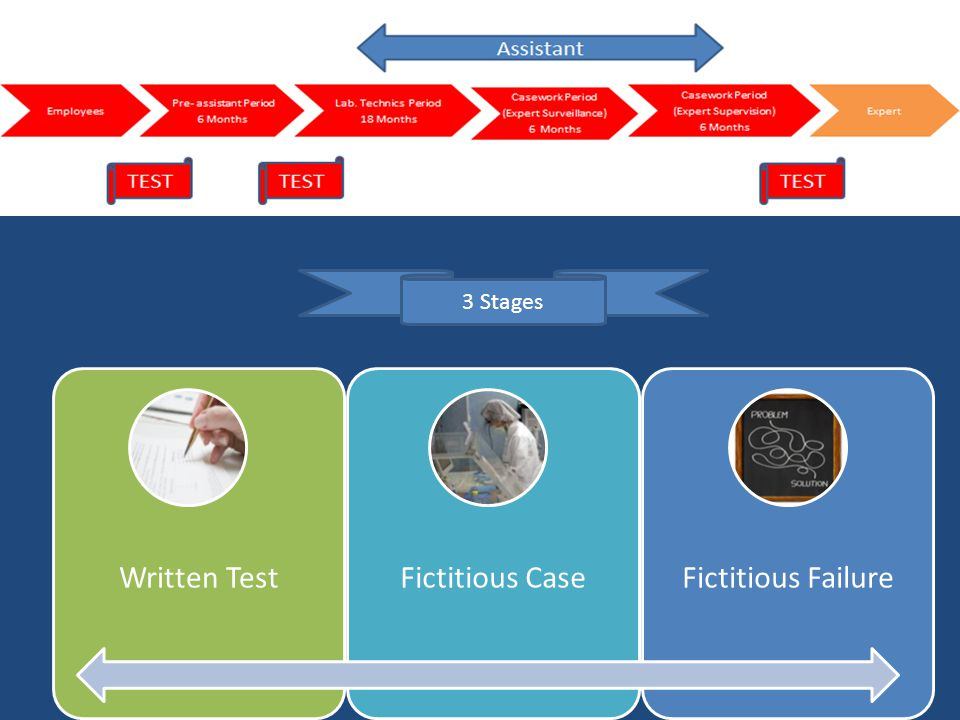 Written TestFictitious CaseFictitious Failure 3 Stages