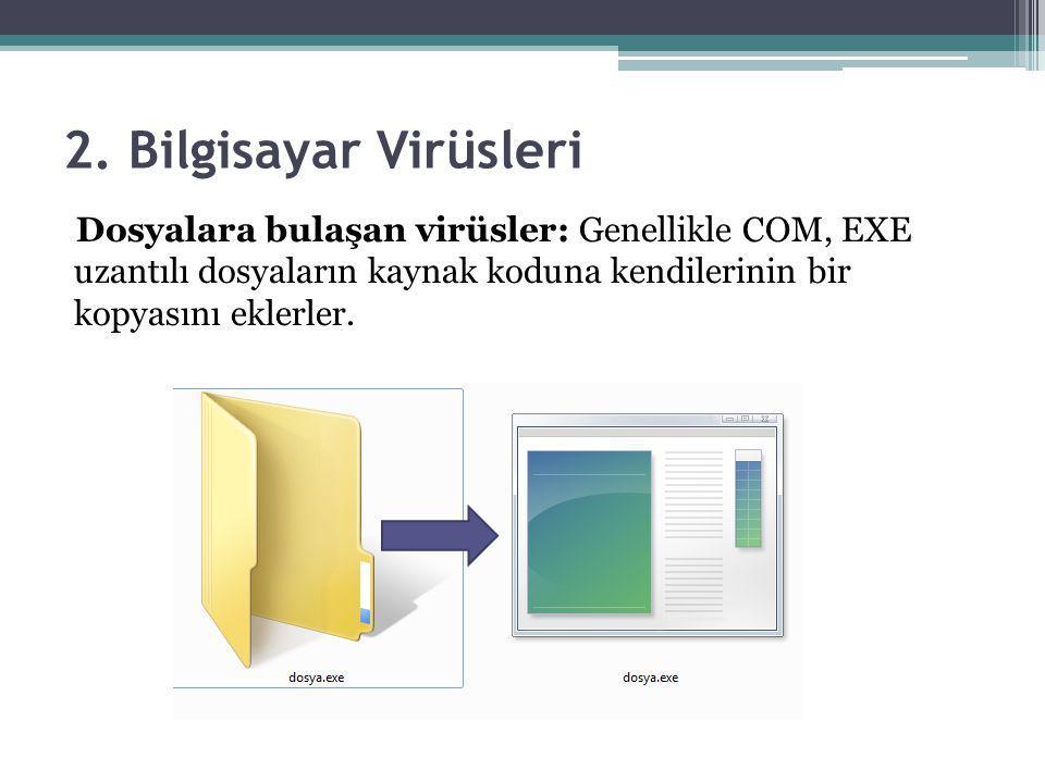 2. Bilgisayar Virüsleri Dosyalara bulaşan virüsler: Genellikle COM, EXE uzantılı dosyaların kaynak koduna kendilerinin bir kopyasını eklerler.