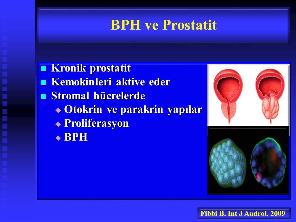Kronik prostatit Kronik prostatit Kemokinleri aktive eder Kemokinleri aktive eder Stromal hücrelerde Stromal hücrelerde  Otokrin ve parakrin yapılar  Proliferasyon  BPH BPH ve Prostatit Fibbi B.