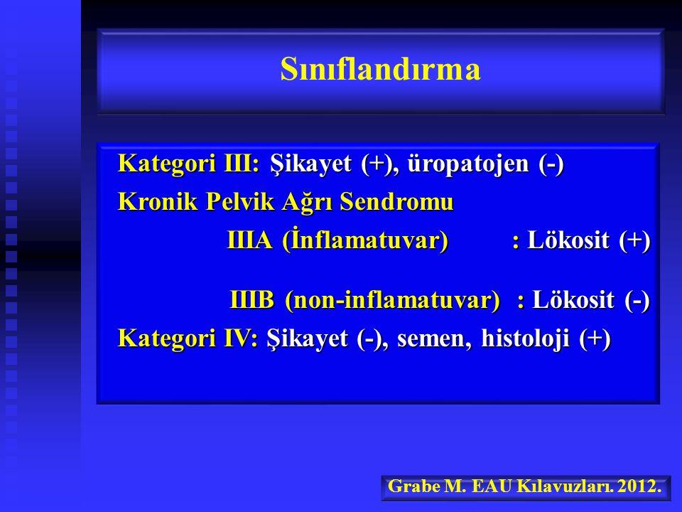 Kategori III: Şikayet (+), üropatojen (-) Kategori III: Şikayet (+), üropatojen (-) Kronik Pelvik Ağrı Sendromu Kronik Pelvik Ağrı Sendromu IIIA (İnflamatuvar) : Lökosit (+) IIIA (İnflamatuvar) : Lökosit (+) IIIB (non-inflamatuvar) : Lökosit (-) IIIB (non-inflamatuvar) : Lökosit (-) Kategori IV: Şikayet (-), semen, histoloji (+) Kategori IV: Şikayet (-), semen, histoloji (+) Sınıflandırma Grabe M.