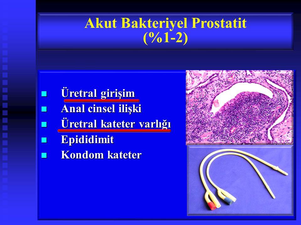 Üretral girişim Üretral girişim Anal cinsel ilişki Anal cinsel ilişki Üretral kateter varlığı Üretral kateter varlığı Epididimit Epididimit Kondom kateter Kondom kateter Akut Bakteriyel Prostatit (%1-2)