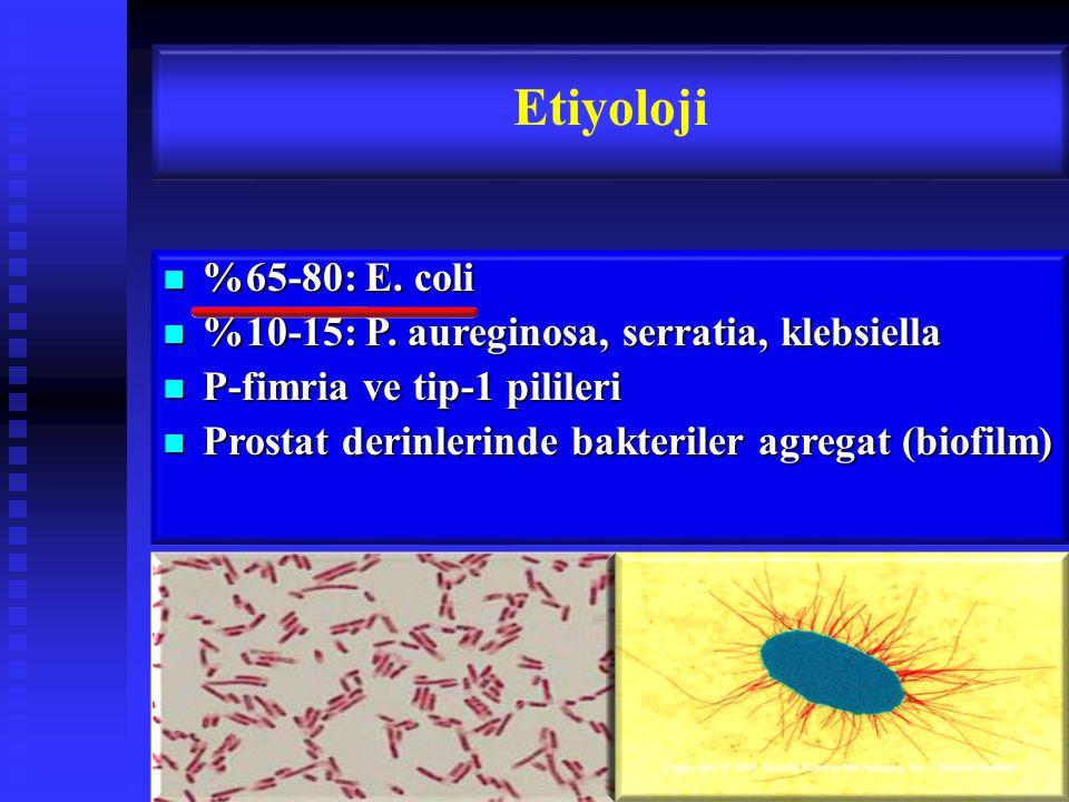 %65-80: E.coli %65-80: E. coli %10-15: P. aureginosa, serratia, klebsiella %10-15: P.