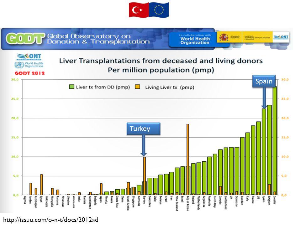 TURKEY ACTIVITY INDICATORS