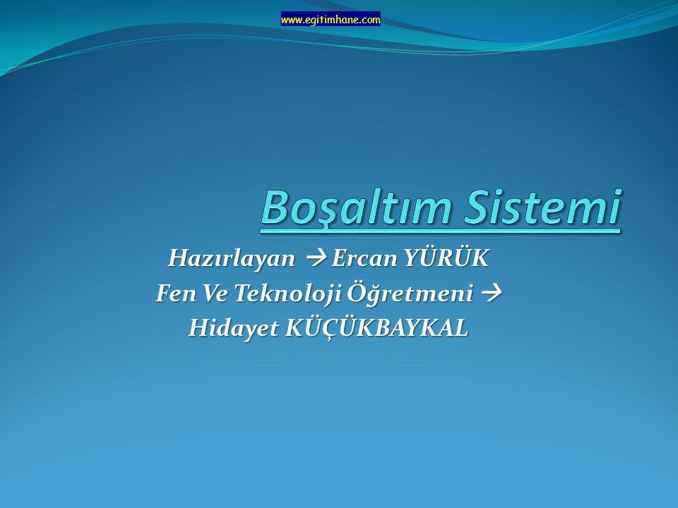 Hazırlayan  Ercan YÜRÜK Fen Ve Teknoloji Öğretmeni  Hidayet KÜÇÜKBAYKAL www.egitimhane.com
