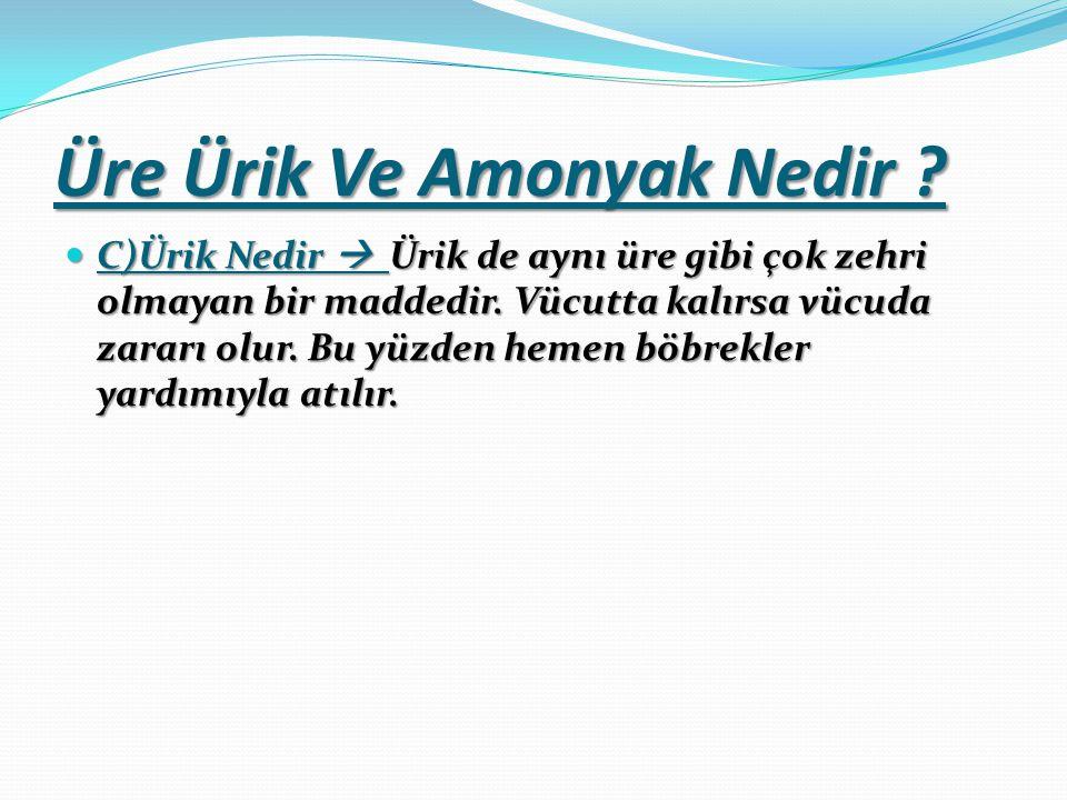 Üre Ürik Ve Amonyak Nedir .C)Ürik Nedir  Ürik de aynı üre gibi çok zehri olmayan bir maddedir.
