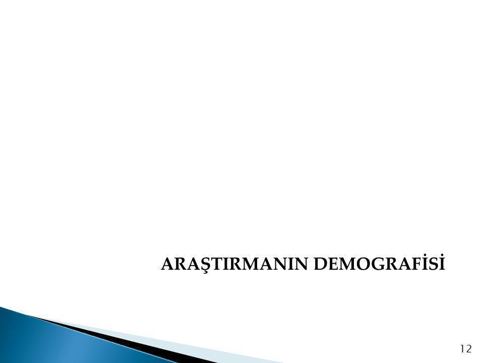 ARAŞTIRMANIN DEMOGRAFİSİ 12