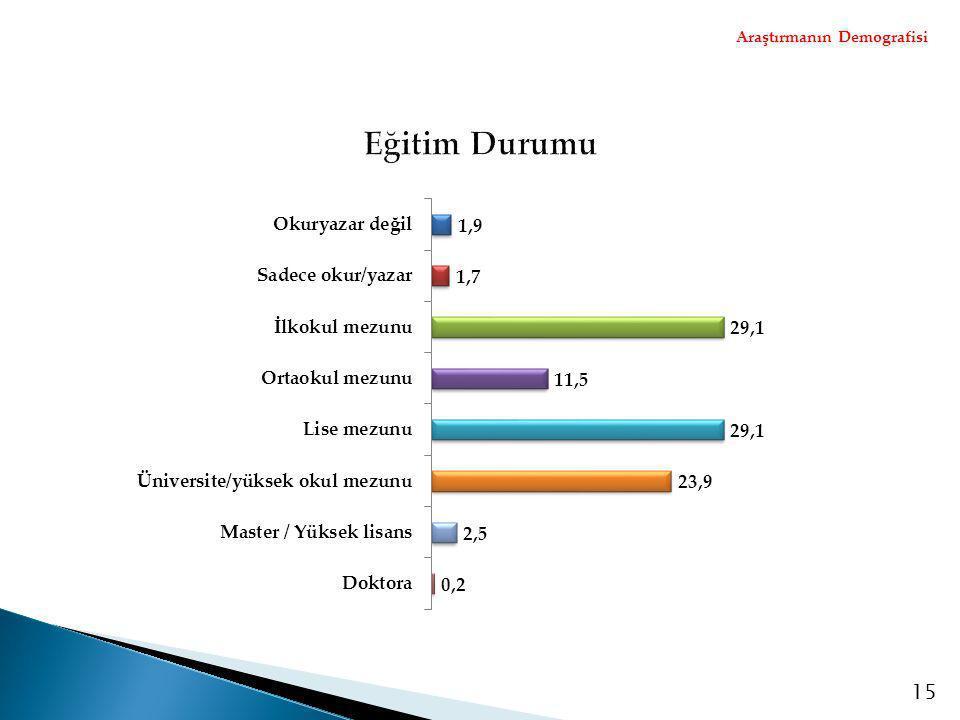 Araştırmanın Demografisi 15