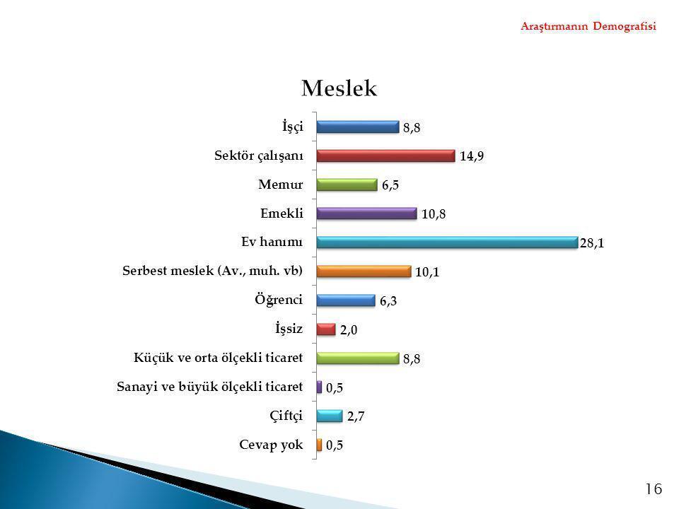 Araştırmanın Demografisi 16