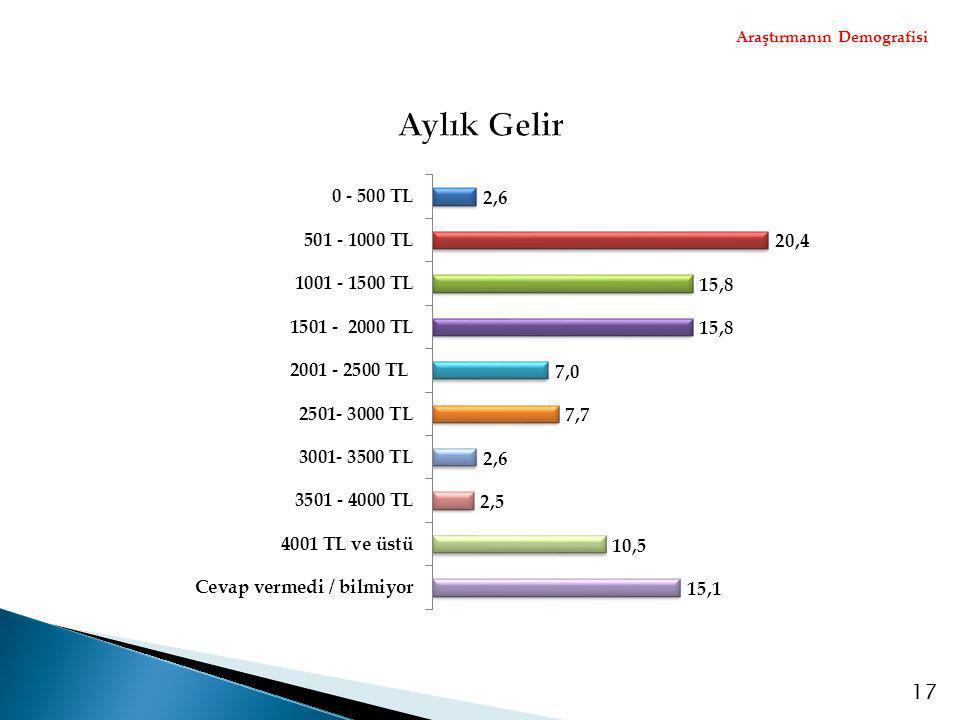 Araştırmanın Demografisi 17