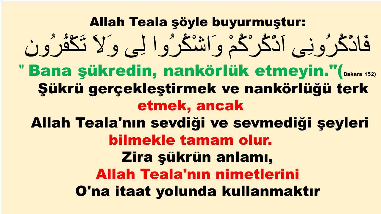 Allah Teala şöyle buyurmuştur: فَاذْكُرُونِى اَذْكُرْكُمْ وَاشْكُرُوا لِى وَلاَ تَكْفُرُونِ