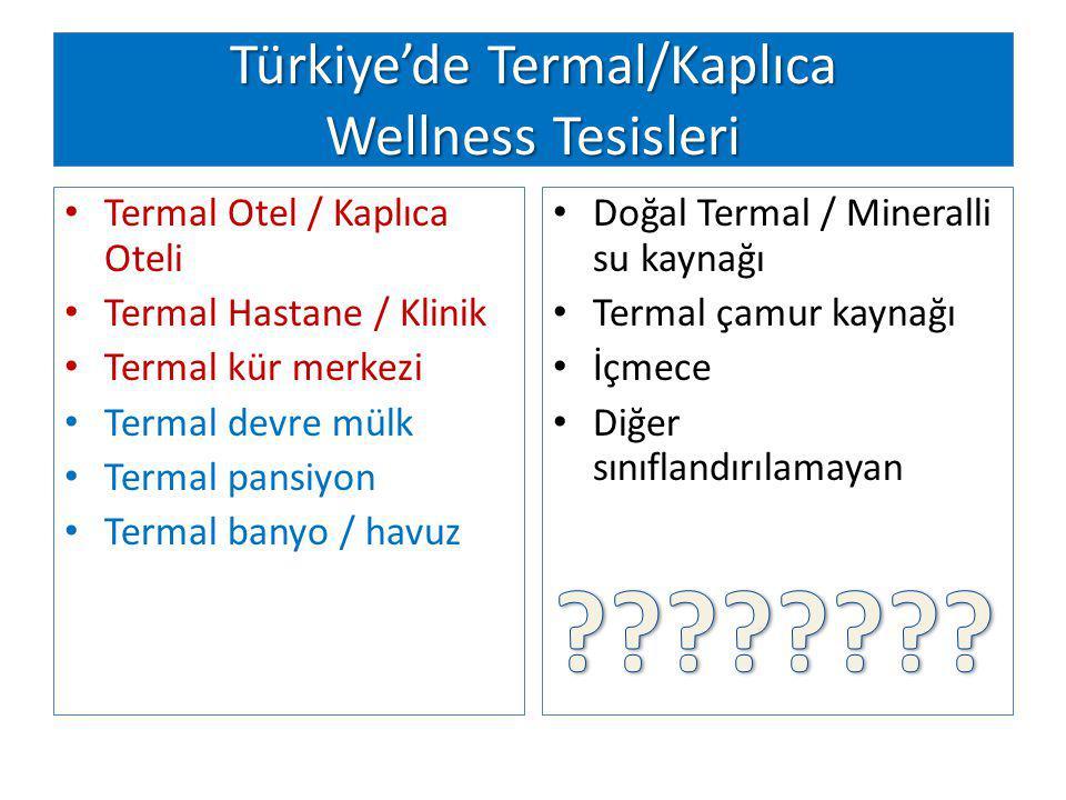 Türkiye'de Termal/Kaplıca Wellness Tesisleri Termal Otel / Kaplıca Oteli Termal Hastane / Klinik Termal kür merkezi Termal devre mülk Termal pansiyon Termal banyo / havuz