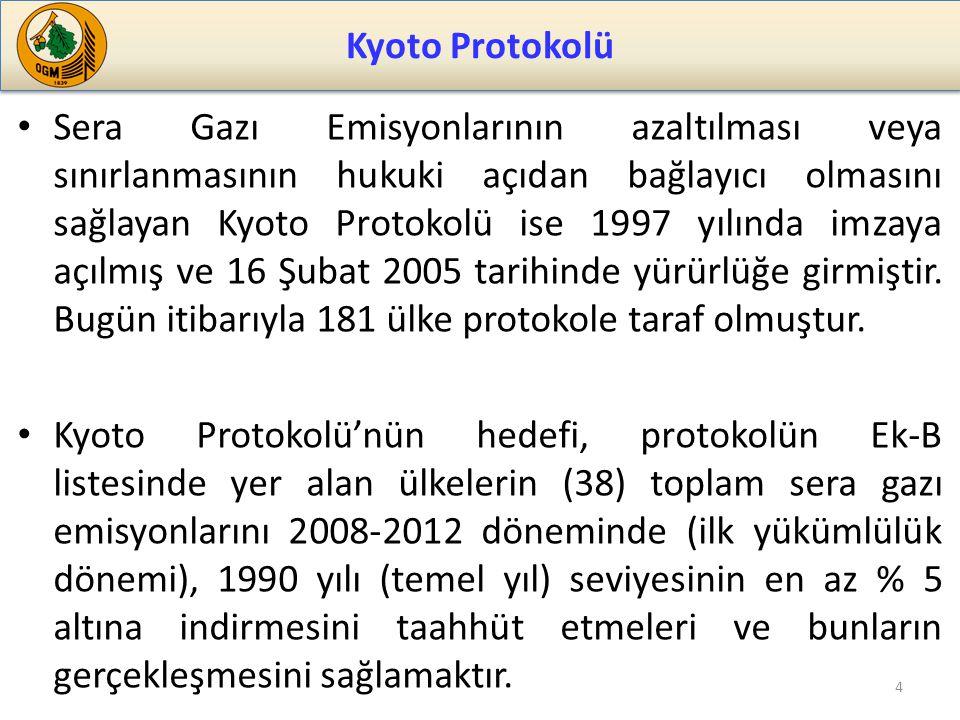 Sera Gazı Emisyonlarının azaltılması veya sınırlanmasının hukuki açıdan bağlayıcı olmasını sağlayan Kyoto Protokolü ise 1997 yılında imzaya açılmış ve 16 Şubat 2005 tarihinde yürürlüğe girmiştir.