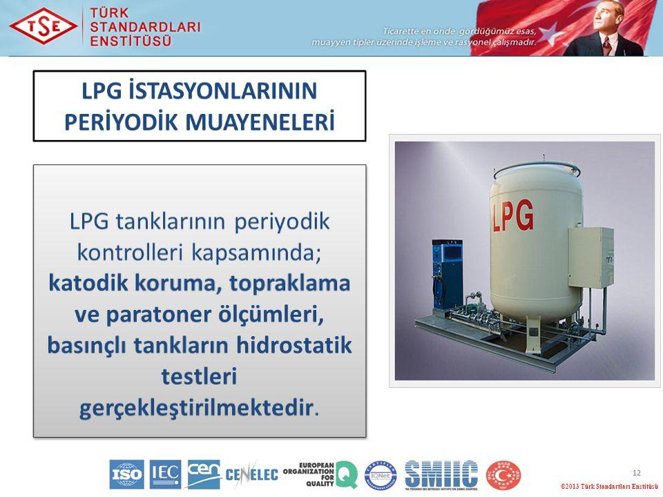 12 ©2013 Türk Standartları Enstitüsü