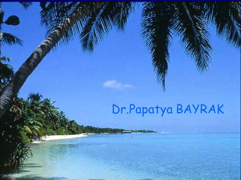 Dr.Papatya BAYRAK