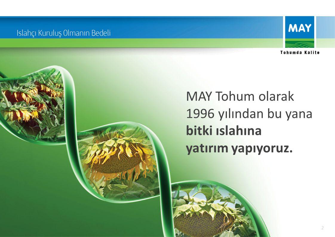MAY Tohum olarak 1996 yılından bu yana bitki ıslahına yatırım yapıyoruz.