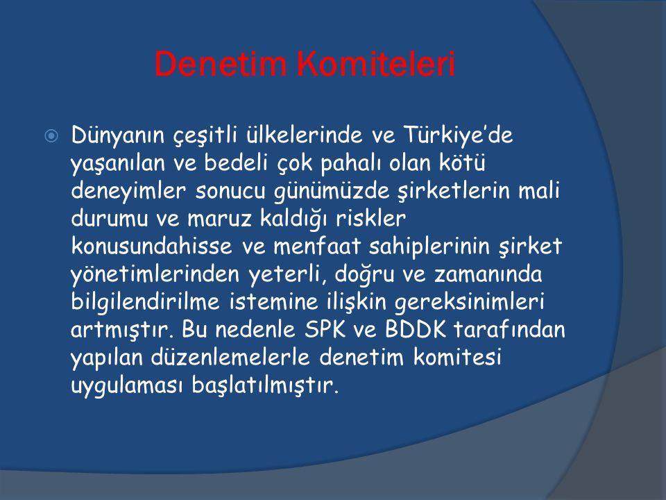 Denetim Komiteleri  Dünyanın çeşitli ülkelerinde ve Türkiye'de yaşanılan ve bedeli çok pahalı olan kötü deneyimler sonucu günümüzde şirketlerin mali