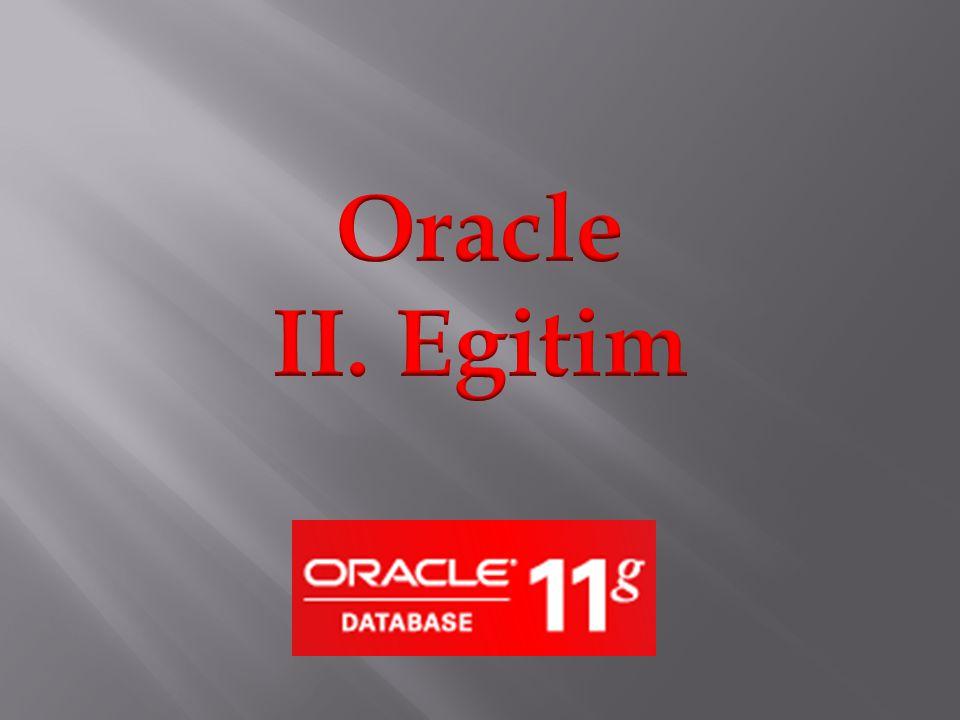 Oracle veritabanimizin arayuzune browser'imizin yardimi ile baglandiktan sonra Application Express kisminda yeni bir workspace olusturalim.