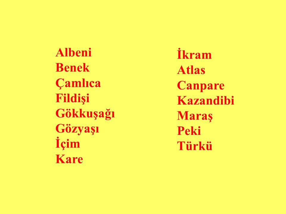 Albeni Benek Çamlıca Fildişi Gökkuşağı Gözyaşı İçim Kare İkram Atlas Canpare Kazandibi Maraş Peki Türkü