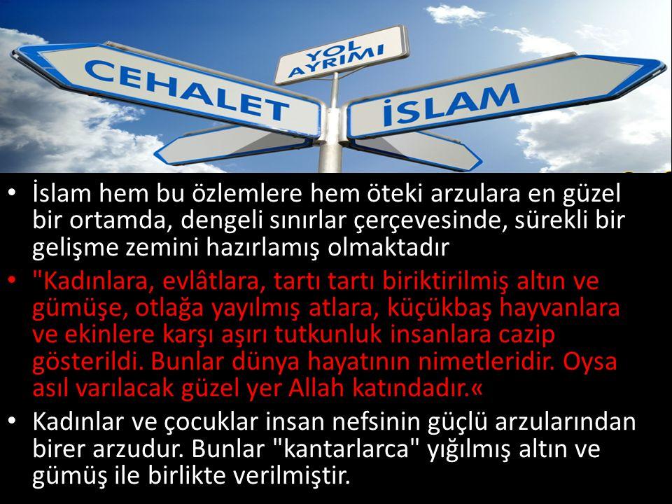 İslam hem bu özlemlere hem öteki arzulara en güzel bir ortamda, dengeli sınırlar çerçevesinde, sürekli bir gelişme zemini hazırlamış olmaktadır
