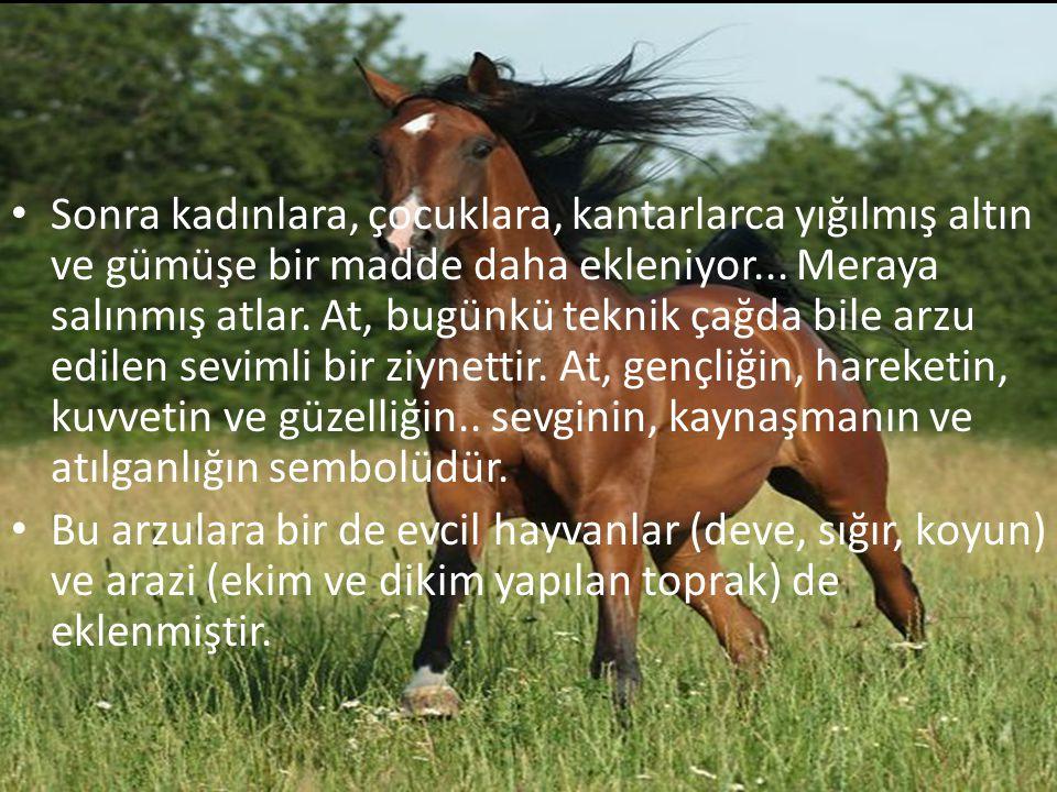 Sonra kadınlara, çocuklara, kantarlarca yığılmış altın ve gümüşe bir madde daha ekleniyor... Meraya salınmış atlar. At, bugünkü teknik çağda bile arzu