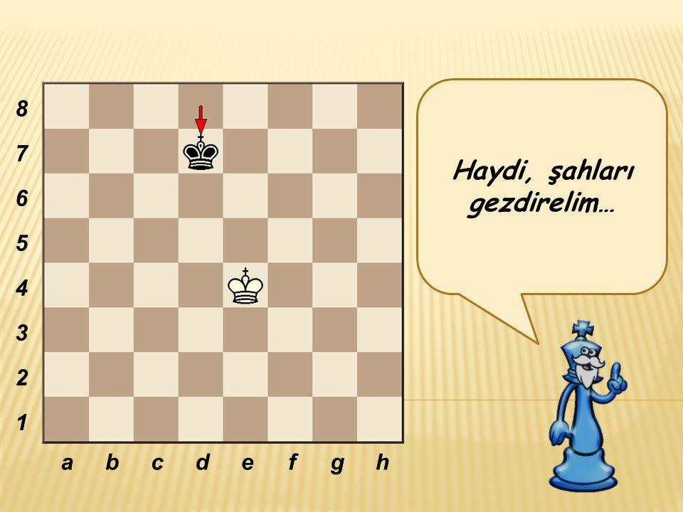 20 hamle içinde fillerden birini alabilirsen oyunu kazanırsın. abcdefgh 8 7 6 5 4 3 2 1