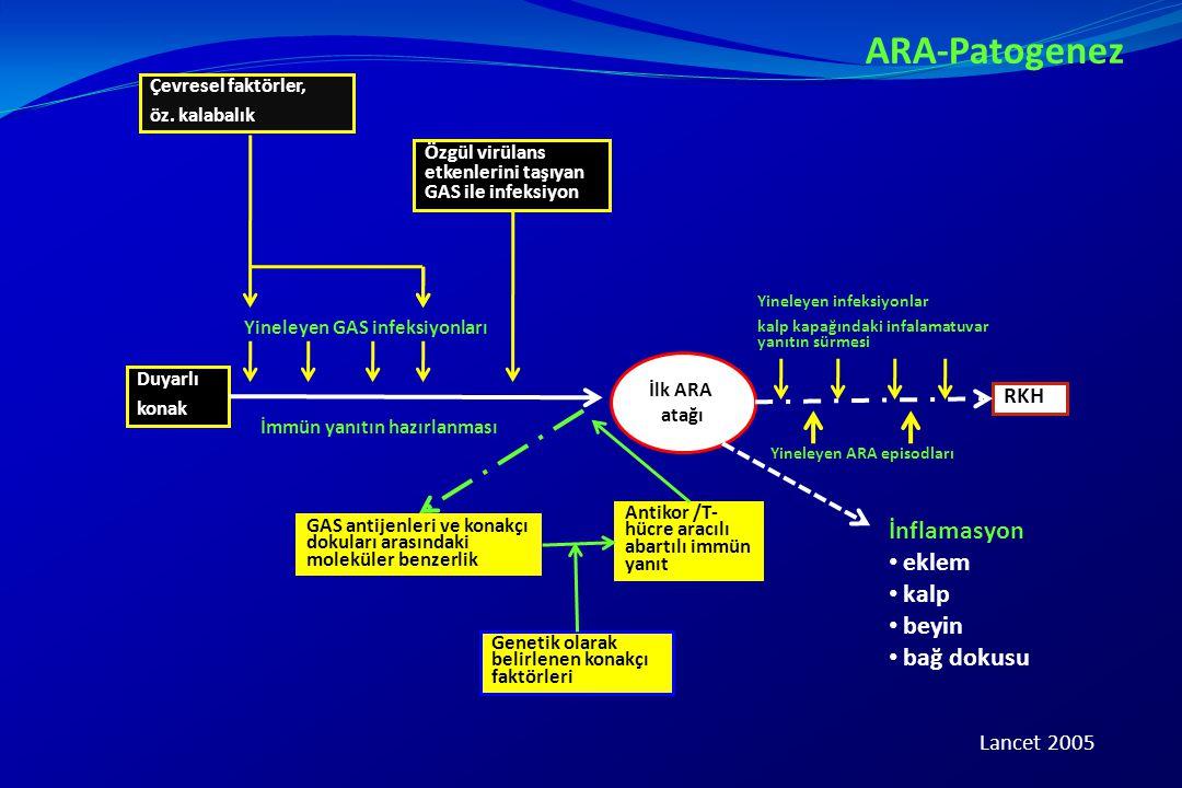 ARA-Patogenez Çevresel faktörler, öz. kalabalık Duyarlı konak Özgül virülans etkenlerini taşıyan GAS ile infeksiyon Yineleyen GAS infeksiyonları İmmün