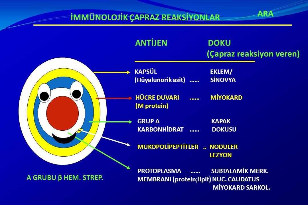 KORE Sİstemik lupus eritematosus Zehirlenmeler Wilson hastalığı Tik bozuklukları Serebral palsy Encephalitis Familial chorea (including Huntington s disease) Intracranial tümör Lyme hastalığı Hormonal ARA-AYIRICI TANI