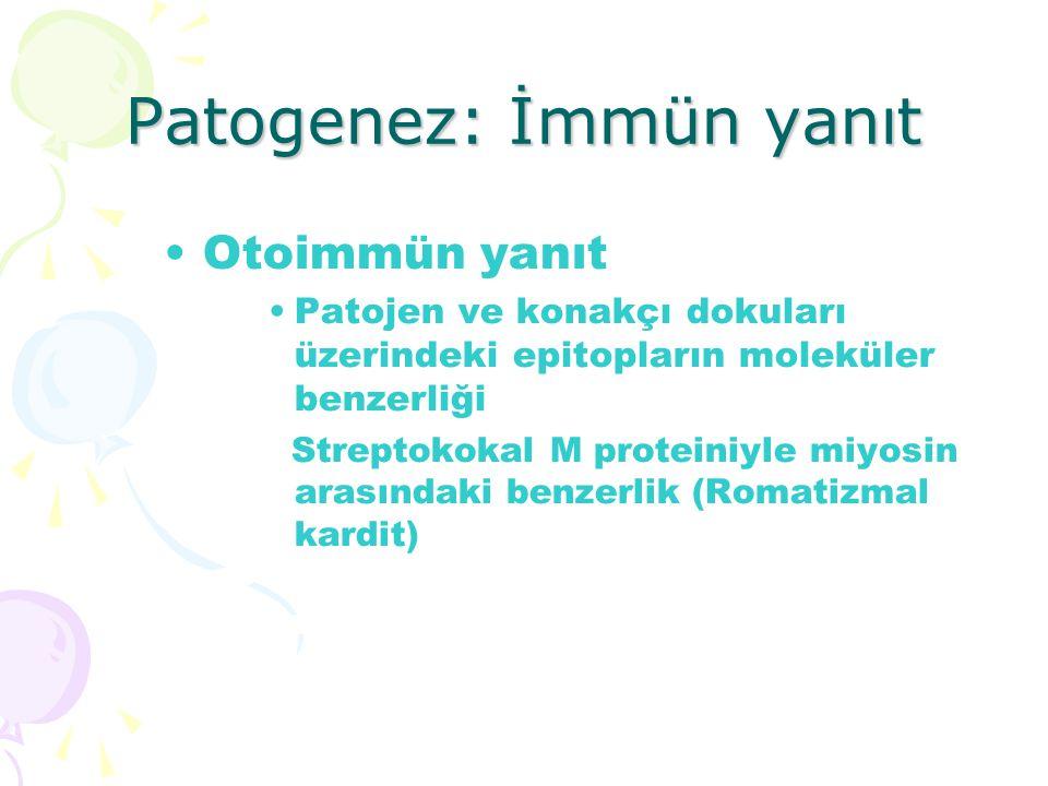 Patogenez: İmmün yanıt Otoimmün yanıt Patojen ve konakçı dokuları üzerindeki epitopların moleküler benzerliği Streptokokal M proteiniyle miyosin arası