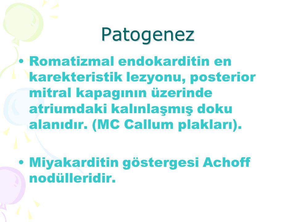Patogenez Romatizmal endokarditin en karekteristik lezyonu, posterior mitral kapagının üzerinde atriumdaki kalınlaşmış doku alanıdır. (MC Callum plakl