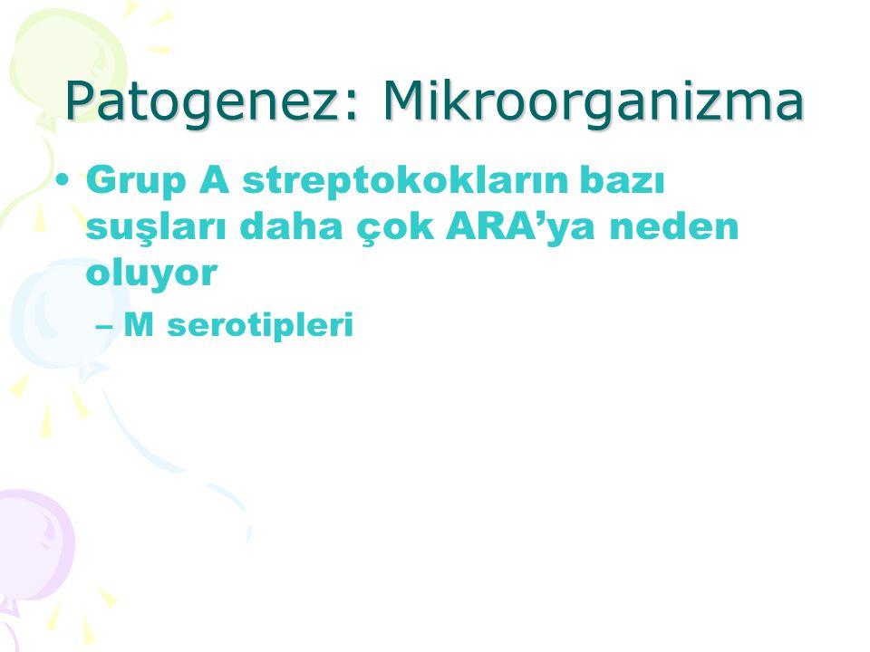 Patogenez: Mikroorganizma Grup A streptokokların bazı suşları daha çok ARA'ya neden oluyor –M serotipleri