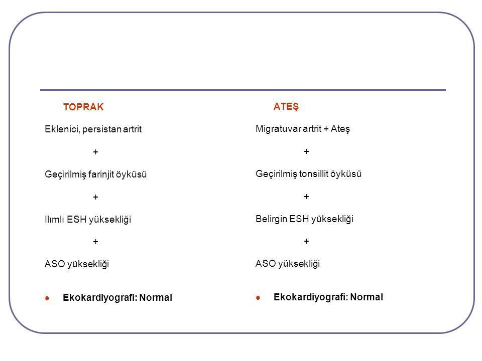 TOPRAK Eklenici, persistan artrit + Geçirilmiş farinjit öyküsü + Ilımlı ESH yüksekliği + ASO yüksekliği Ekokardiyografi: Normal ATEŞ Migratuvar artrit